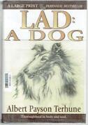Lad A Dog