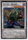 Normal Rare Individual Yu-Gi-Oh! Cards