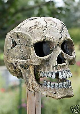 Sammeln & Seltenes Esoterik, Mystik & Magie Satan Pentagramm Rote Augen Alchemie Skull Gothik Pin Button Badge Anstecker 68