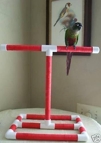 Parrot Gym Bird Supplies Ebay