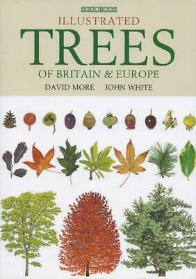 Illustrated Trees of Britain and Northern Europe, John White,David More, New Boo
