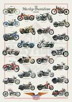 Harley Davidson & Choppers POSTERS - NEW