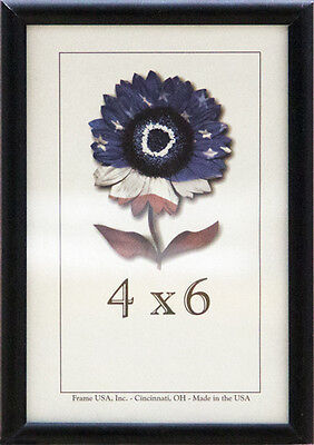 4x6 Matte Silver Frame (4x6 Metal Picture Frame w/Real Glass - Flat Black, Silver, or Gold )