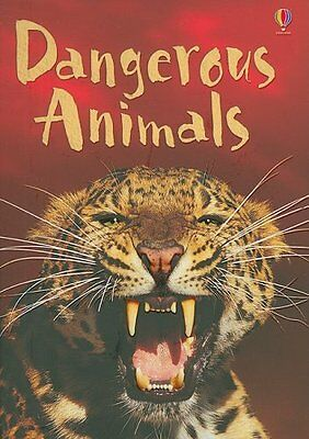 Dangerous Animals: Level 1: Internet Referenced (Usborne Beginners Level 1: Natu - Beginner Level
