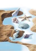 Seashell Mould