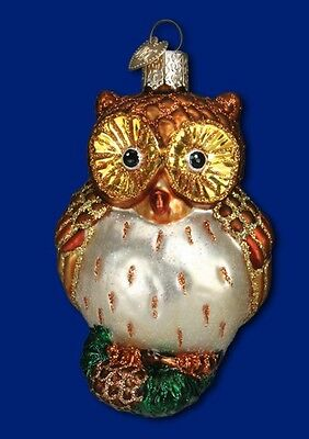 WIDE-EYED OWL OLD WORLD CHRISTMAS GLASS BIRD AVIARY WILDLIFE ORNAMENT NWT 16090