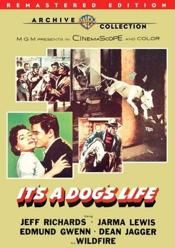 IT'S A DOG'S LIFE (1955 Wildfire) Remastered -  Region Free DVD - Sealed