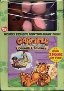 Garfield and Friends DVD