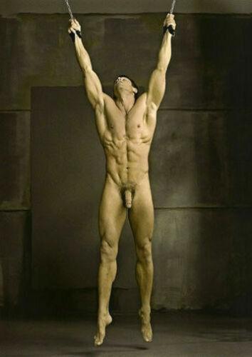 CHENPAT1093 Naked Muscular man portrait handmade paint oil painting art canvas