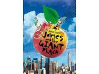 James & The Giant Peach theatre tickets x2