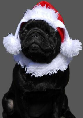 Hundemütze Weihnachten Nikolaus Weihnachtsmütze Hund Katze Hundekostüm (Mops Katze Kostüm)