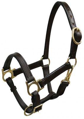 MINI HORSE SIZE TriplePly LEATHER HAVANNA BROWN Adjustable HALTER BRASS Hardware