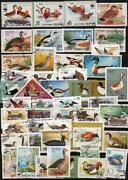Bird Postage Stamps