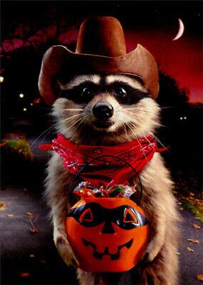 Funny Halloween Greetings (Raccoon Cowboy Trick Or Treating Funny Halloween Card - Greeting Card by)