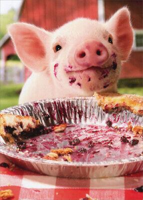 Party Pig Pie Plate - Birthday Card - Greeting Card by Avanti Press
