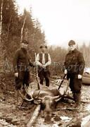 Old Hunting Photos