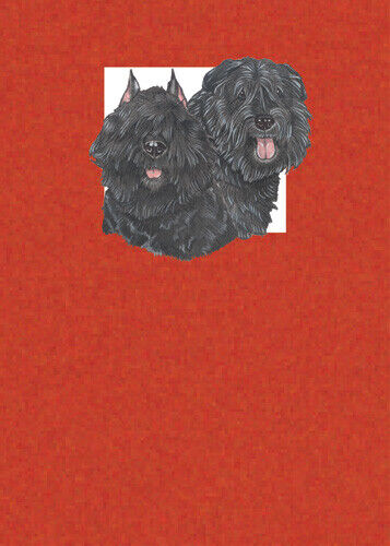 Bouvier des Flandres Blank Note Cards Boxed