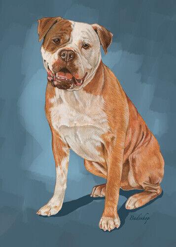 American Bulldog Birthday Card