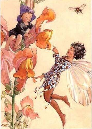 Margaret Tarrant Postcard Snapdragon Fairies Fairy Tale  Medici