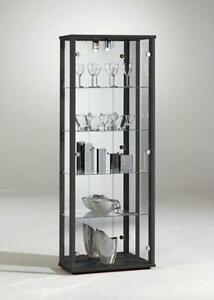 Silver Glass Display Cabinet