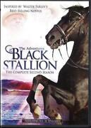 The Black Stallion DVD