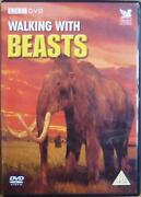 Walking with Beasts DVD