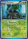 Pokemon Card Torterra