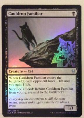 Cauldron Familiar FOIL - MTG Throne of Eldraine - Mint/NM