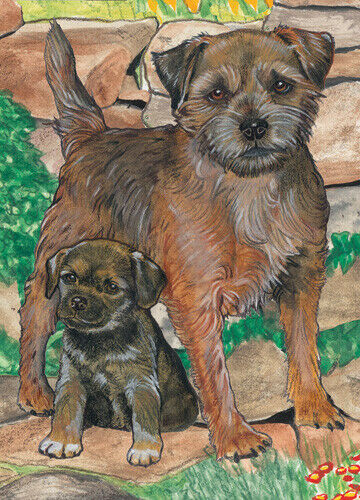 Border Terrier Blank Note Cards Boxed