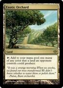 MTG Exotic Orchard