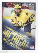 Michigan Hockey