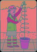 Tomato Plant Support