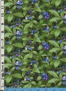 Blueberry Fabric