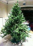 Used Artificial Christmas Trees