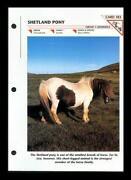 Wildlife Fact File