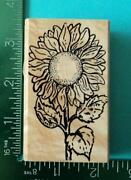 Hampton Art Rubber Stamps