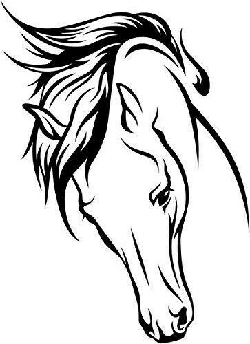 Personalized Arabian horse viynl decal sticker ~ car truck or trailer.