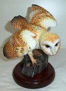Lenox Owl