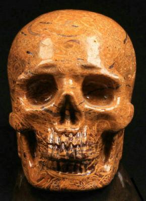 2.4 IN Genuine Elephant Skin Jasper Carved Crystal Skull, Realistic,Healing #633