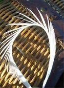 Millinery Feathers