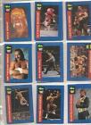 1991 Classic WWF