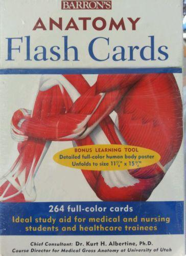 Anatomy Flash Cards: Books | eBay