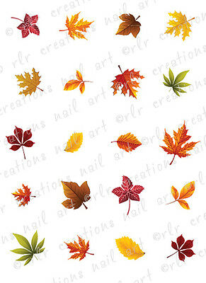 20 FALL LEAVES ASSORTMENT WATER SLIDE NAIL ART DECALS AUTUMN  LEAF  NAILS - Falls Water Slide