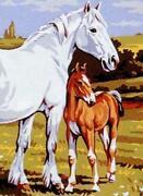 Stickbild Pferd