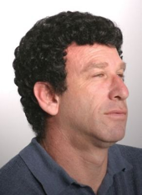MENS MALE SHORT HAIR TIGHT SMALL CURLY CURLS FERRELL COSTUME WIG JUSTIN
