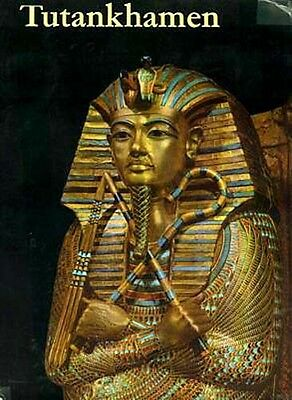 Tutankhamen Life Death Pharaoh Coronation Family Youth Death 9 Year Reign Color