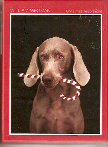 Weimaraner Weim Wegman 20 Christmas Cards 4 cards each of 5 images*