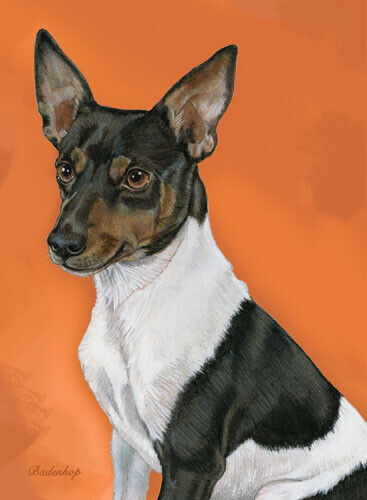 Rat Terrier Blank Note Cards Boxed