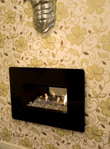 Glass Fronted Gas Fire Ebay