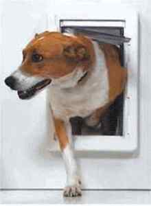 PET-DOORS-RUFF-WEATHER-XL-W-WALL-MOUNT